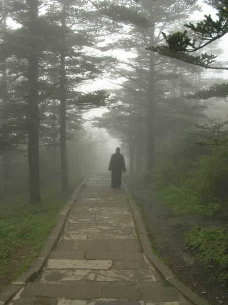 A monk in the mist. - Emei Shan