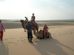 """These are Bactrian camels from Asia. Asian camels are a lot rarer than the one-humpers that come from the Middle East Ammon explained. - Sand Dunes"