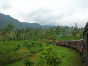 Train through the central highlands