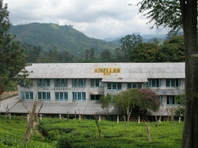 Tea factory, Ella
