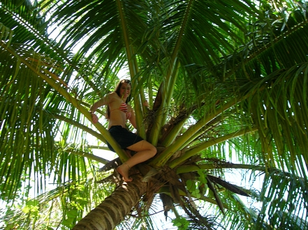 Bre the palm climber