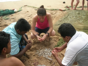 Bre helping sort the fish -Tangalla