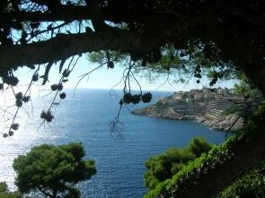 Gorgeous coast