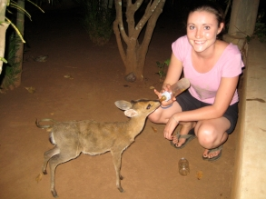 Savannah Grace with dik diks, Benin