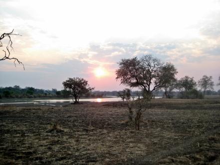 South Luangwa NP