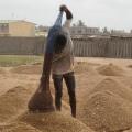 Piling sand, Benin