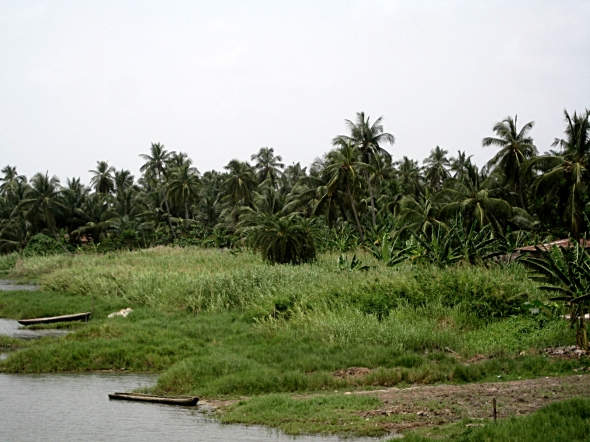 Very nice and green in Benin
