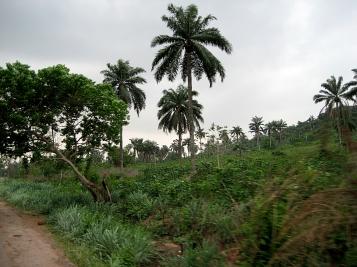 , Nigeria