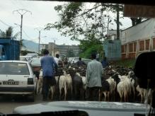 Yoaunde, Cameroon's capital city