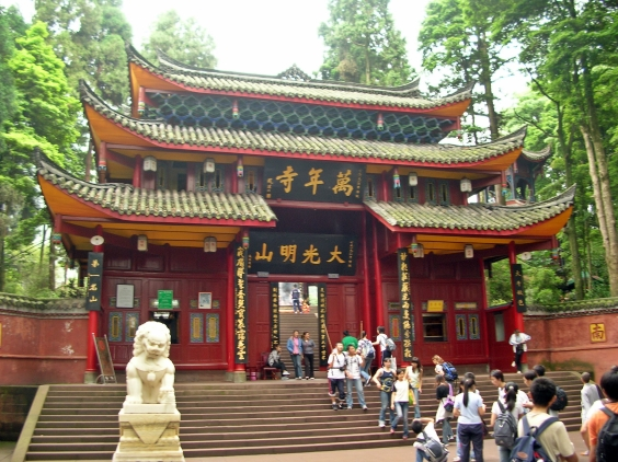 My head fell back in awe as I passed under another decorative gateway. Red pillars reached down from the arched and pointed roofs, and a black wooden sign displaying golden Chinese lettering hung in the center. It looked incredibly mystical.