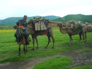 "Can you imagine being able to pack your whole house onto the backs of a few camels?"" Mom reminded us about seeing a nomadic family in travel mode a few hours before. They had been transporting their ger on a couple of camels loaded with the orangey-red support poles and the ger's felt cover."