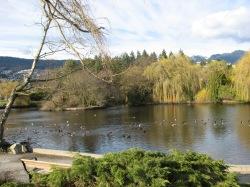 Ambleside Park, West Vancouver, BC