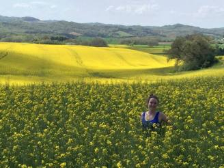 mustard fields of France - Savannah Grace