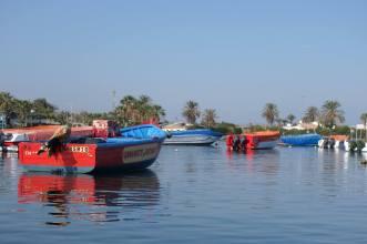 Paracas Harbour, Peru