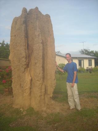 large termite hill. Australia