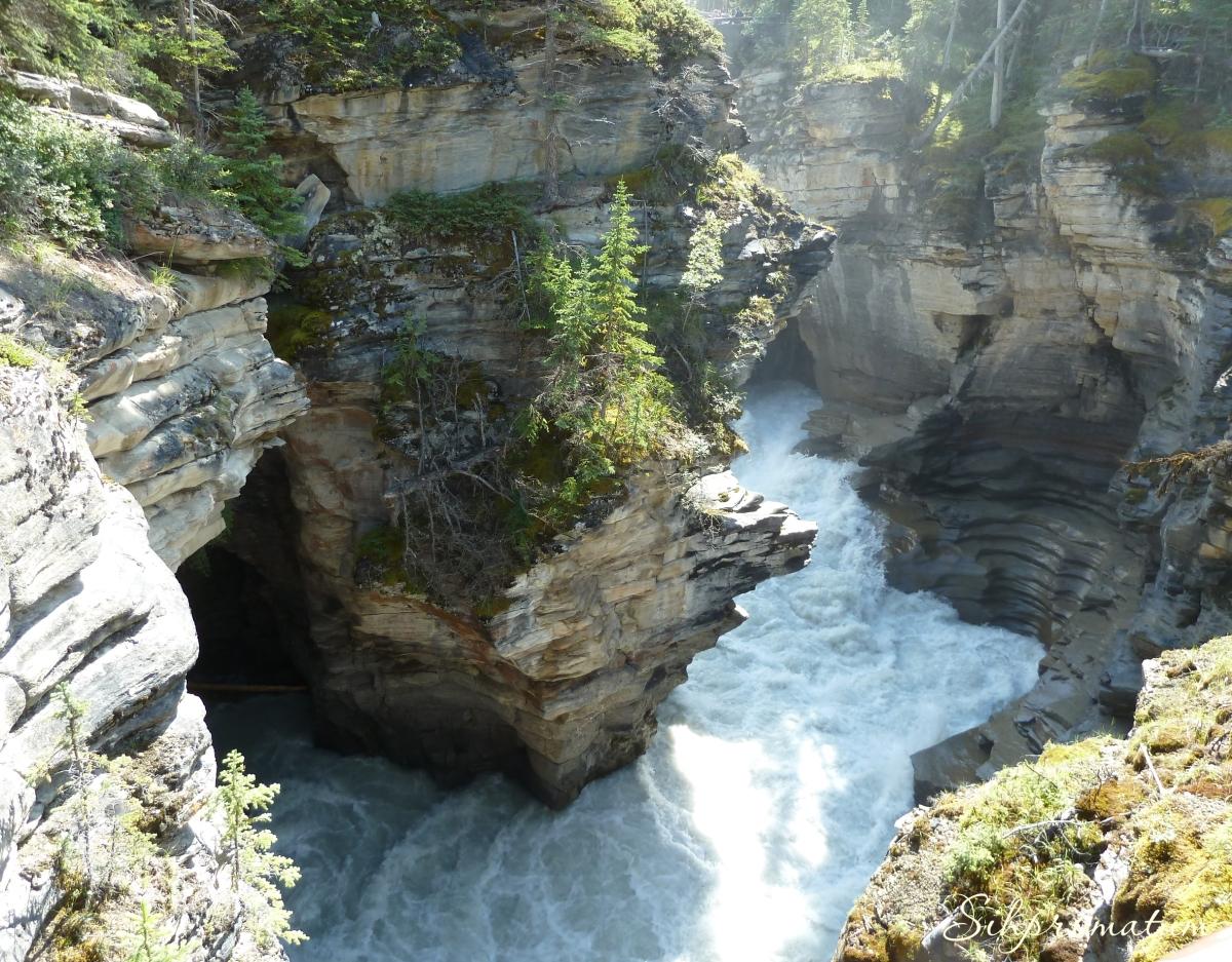 Mistaya Canyon Banff National Park.