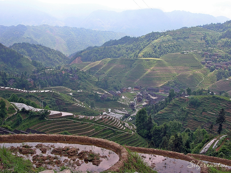 Longji Rice Terrace, China