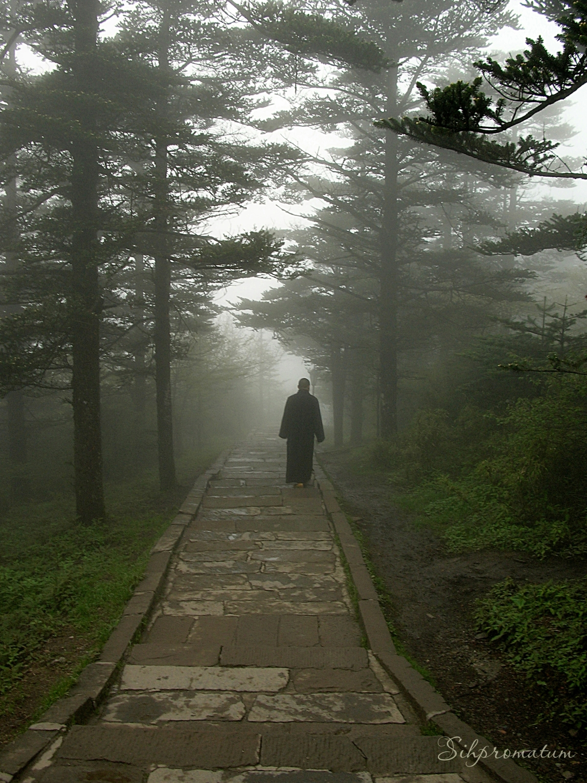 Emei Shan, China