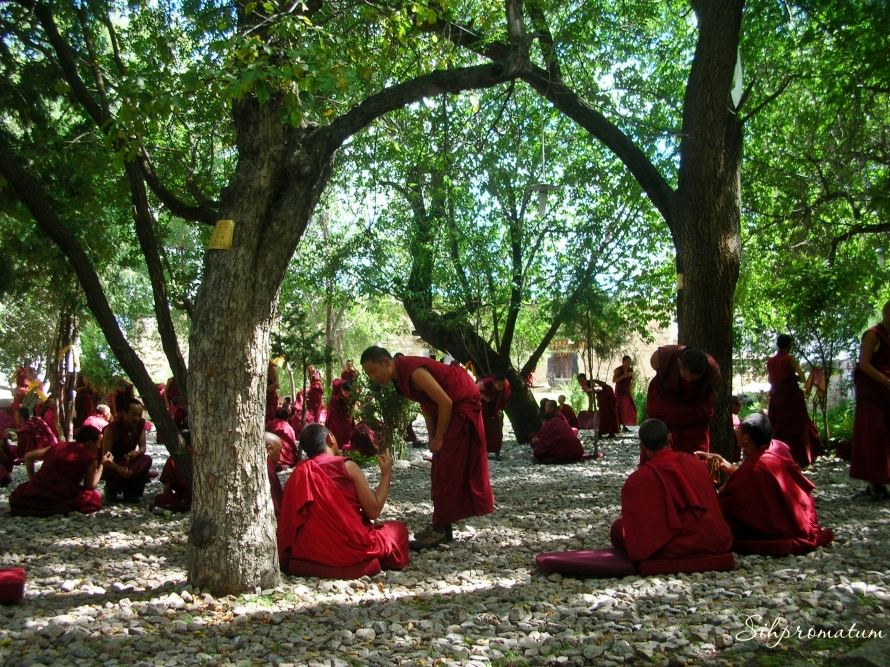 Monks during debate. Lhasa ,China