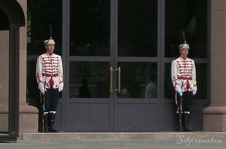 Guards at the presidential offices