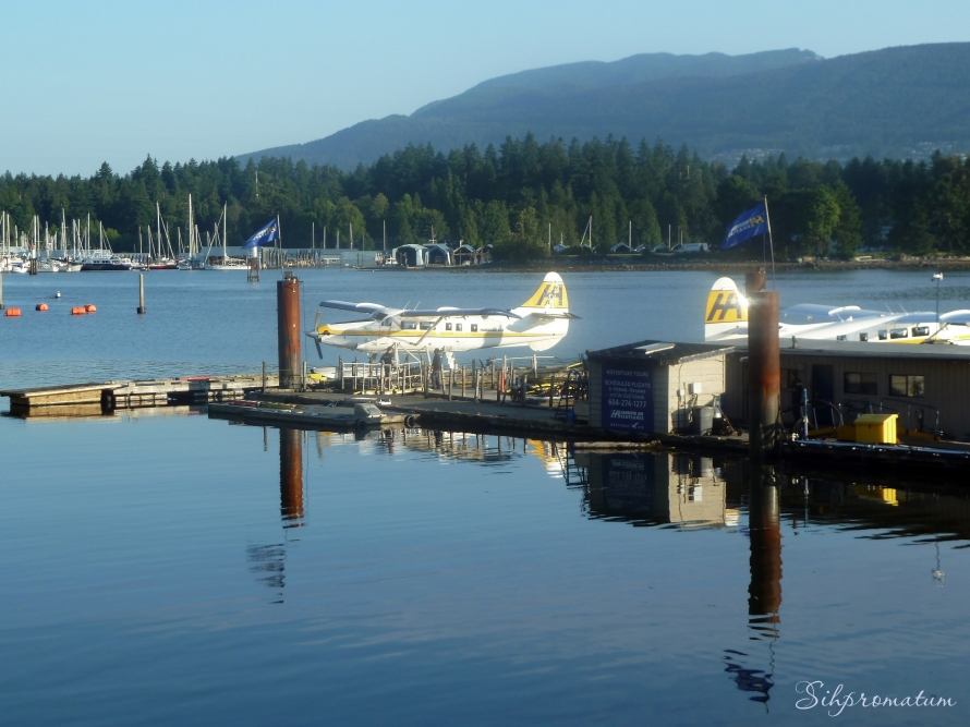 Coal Harbour Airport