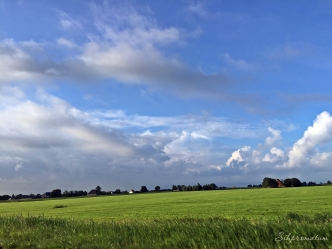 Flatness of Netherlands