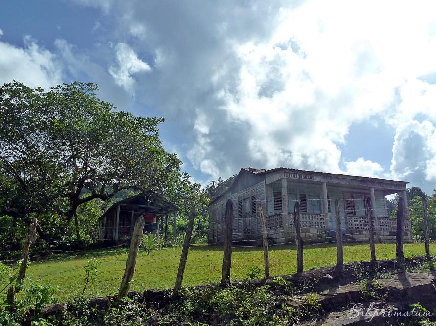 Punta Cana area.
