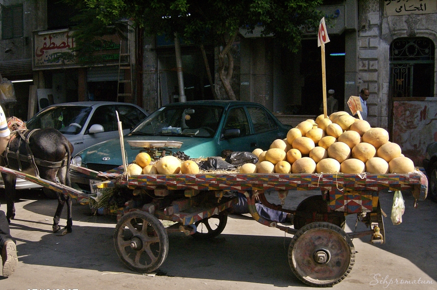 Fresh fruit in Cairo