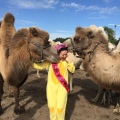 Savannah with her new friend camels