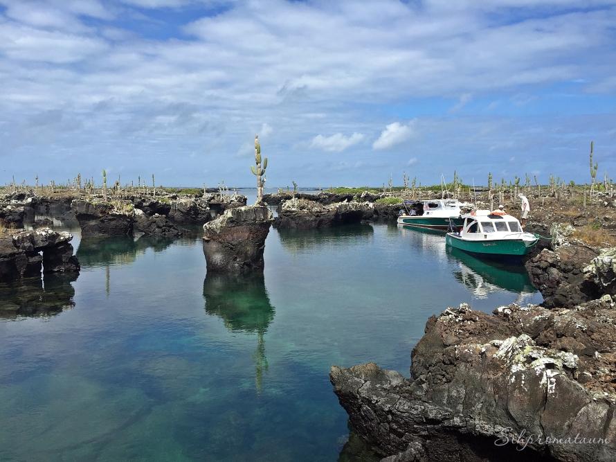 Galápagos Island