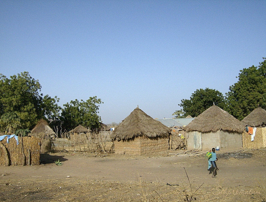 village in Gambia