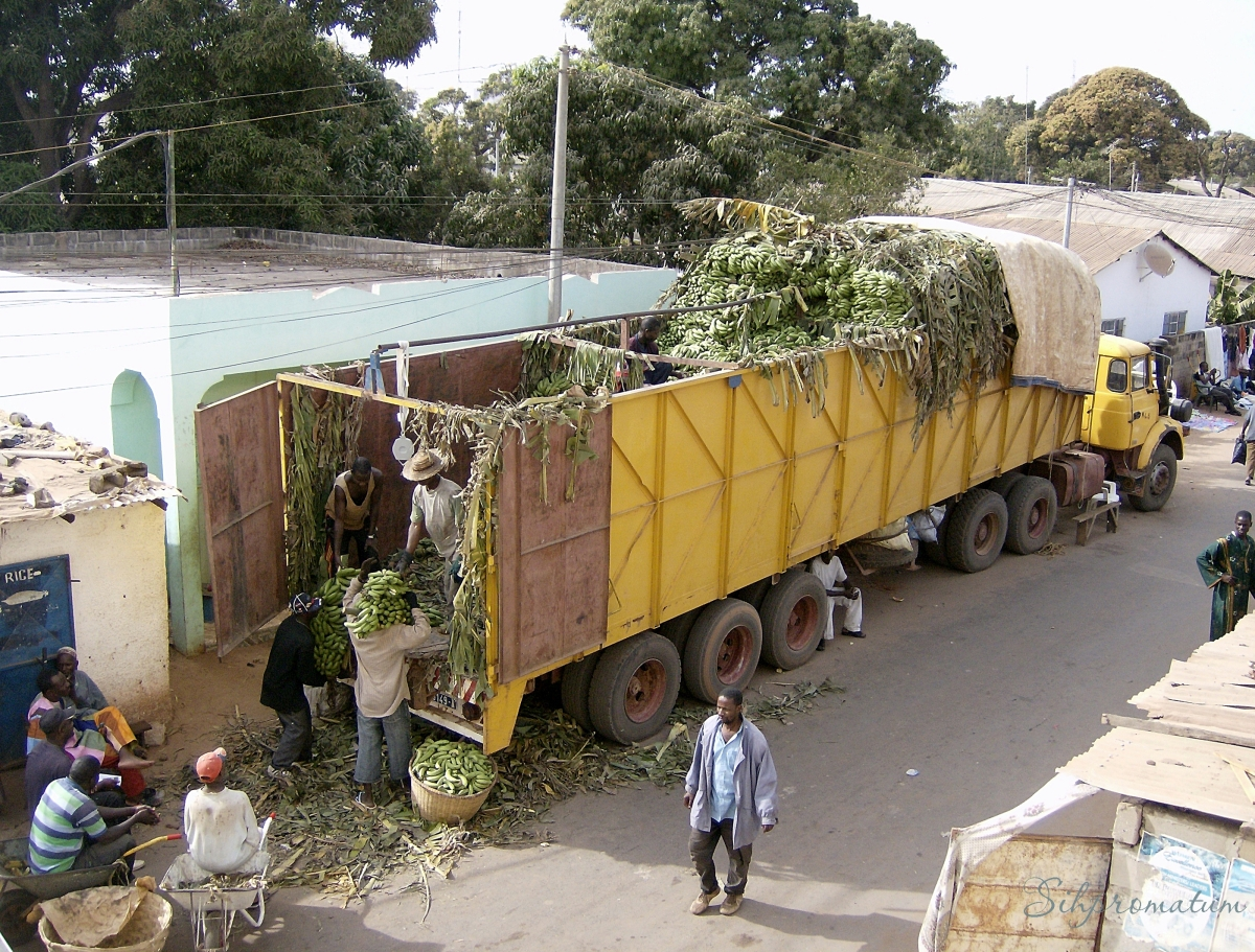 truck of plantain