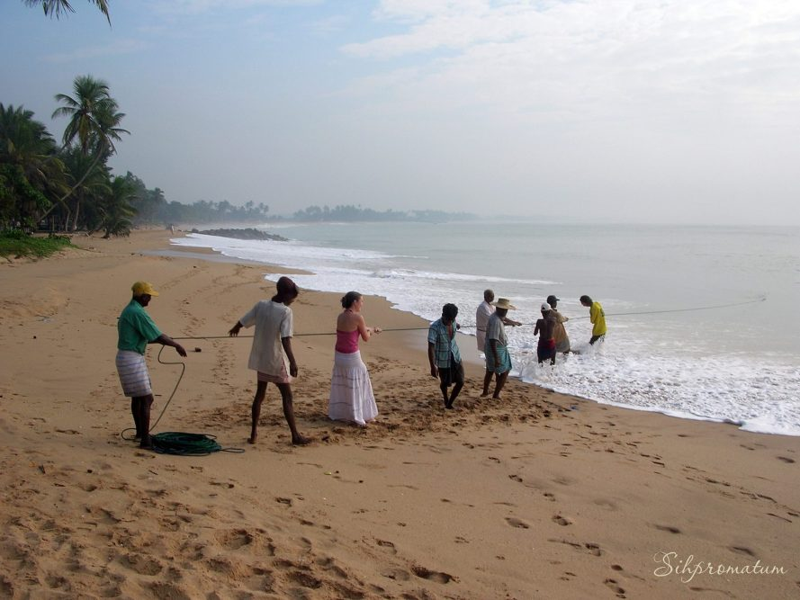 helping-pull-in-the-fishing-nets-in-sri-lanka