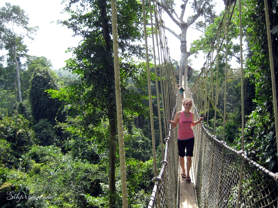 Kakum National Park canopy walk