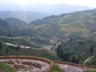 rice terraces of Longji