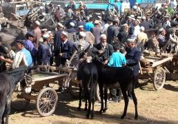 Market day in Kashgar