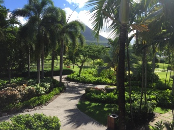 Tropical Paradise on Nevis