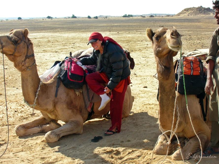 Thar Desert camel trek