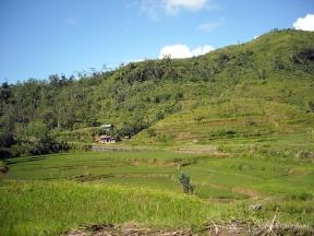 Indonesia 140